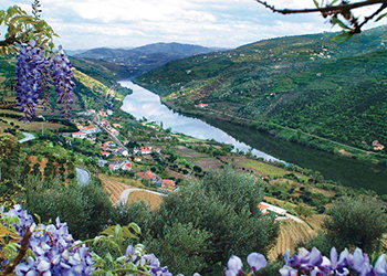 Duro River Valley, Portugal